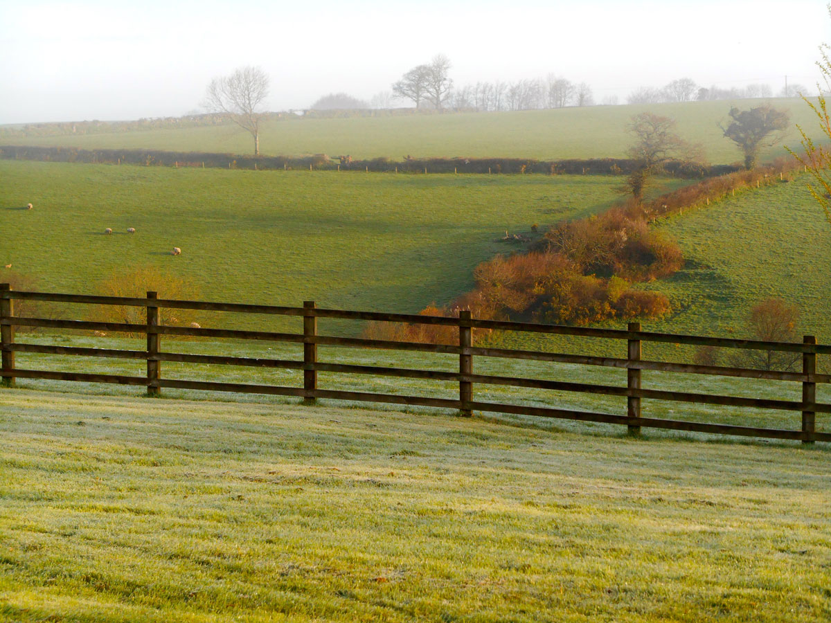 Farmland with self catering cottages in rural devon